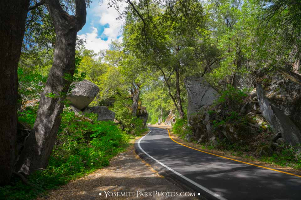 One way road through shade boulder forest