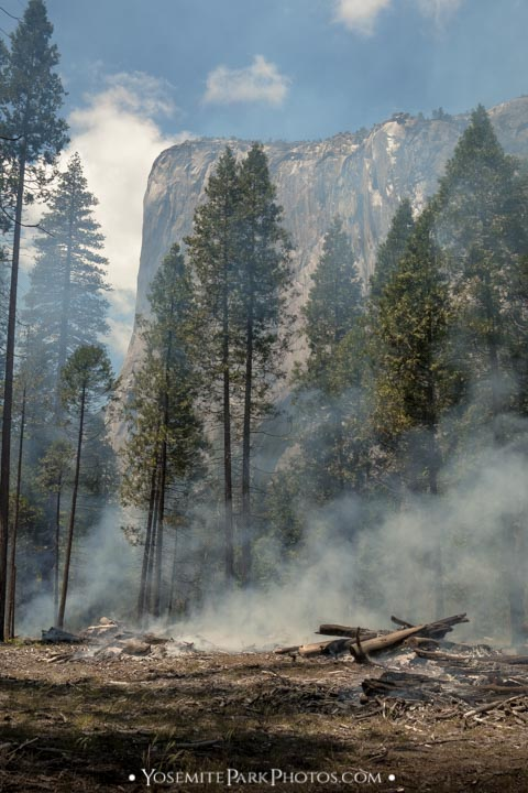 Thick smoke through trees, on valley floor - El Capitan above