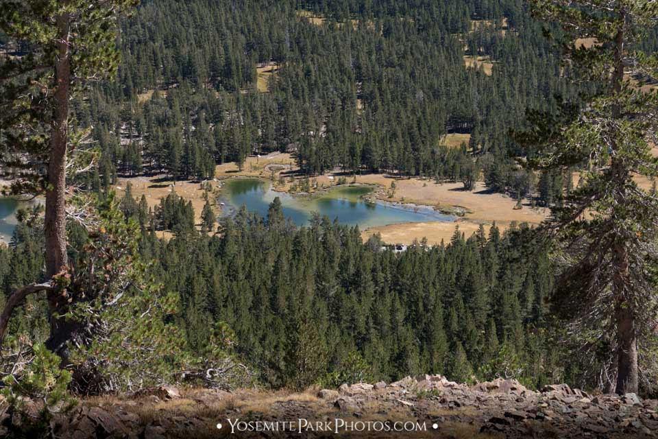 Closeup of snowmelt pond near Tioga Lake