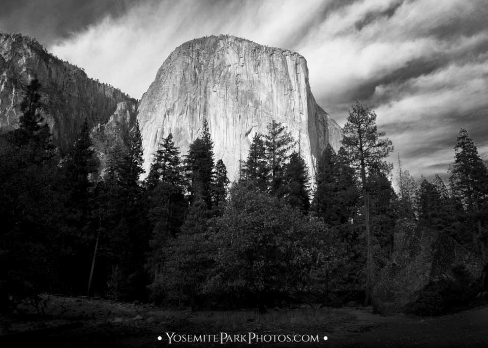 El Capitan Photos - Black and White from Northside Drive