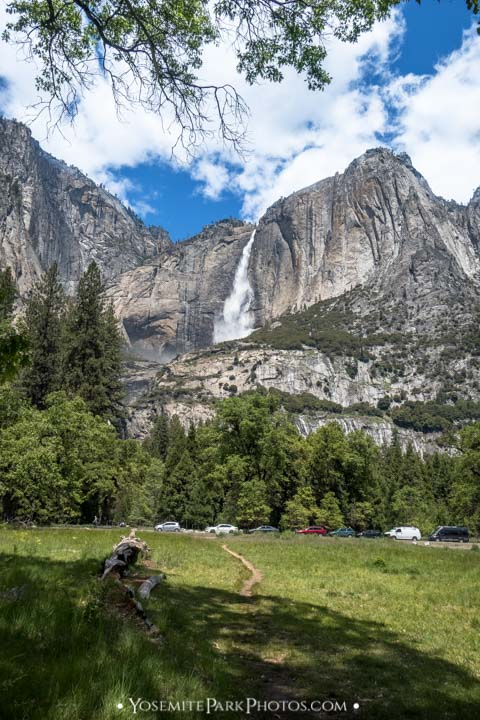 Heavy flow of Yosemite Falls in May