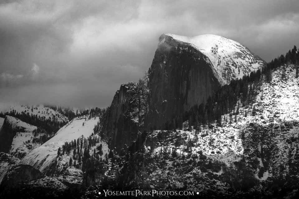 Closeup in winter snow, shot from Tunnel View - black and white