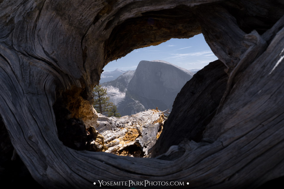 Half Dome view through hole in tree trunk