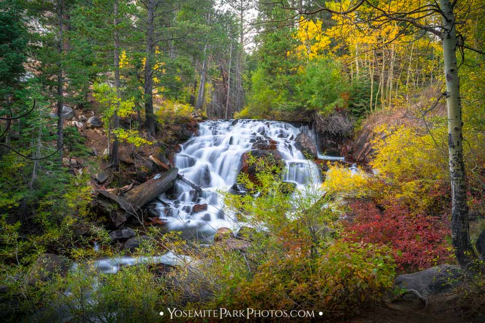 Stunning autumn forest waterfall (long exposure) - Lee Vining Canyon fall colors