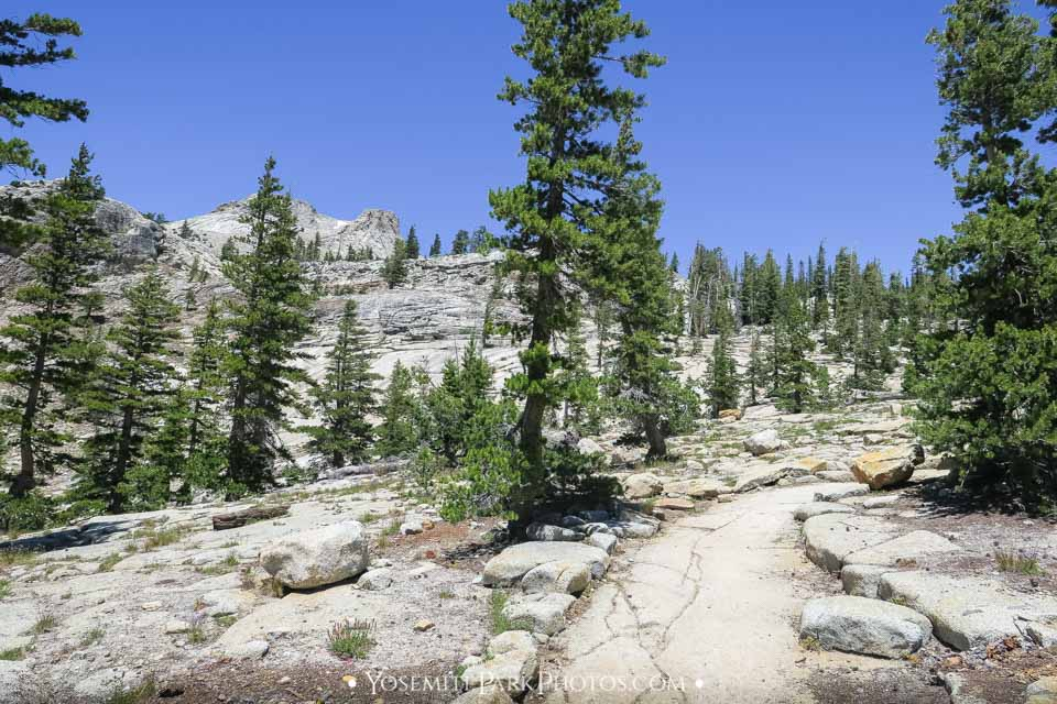 Perfect, Rocky Trail - May Lake Hike Photos