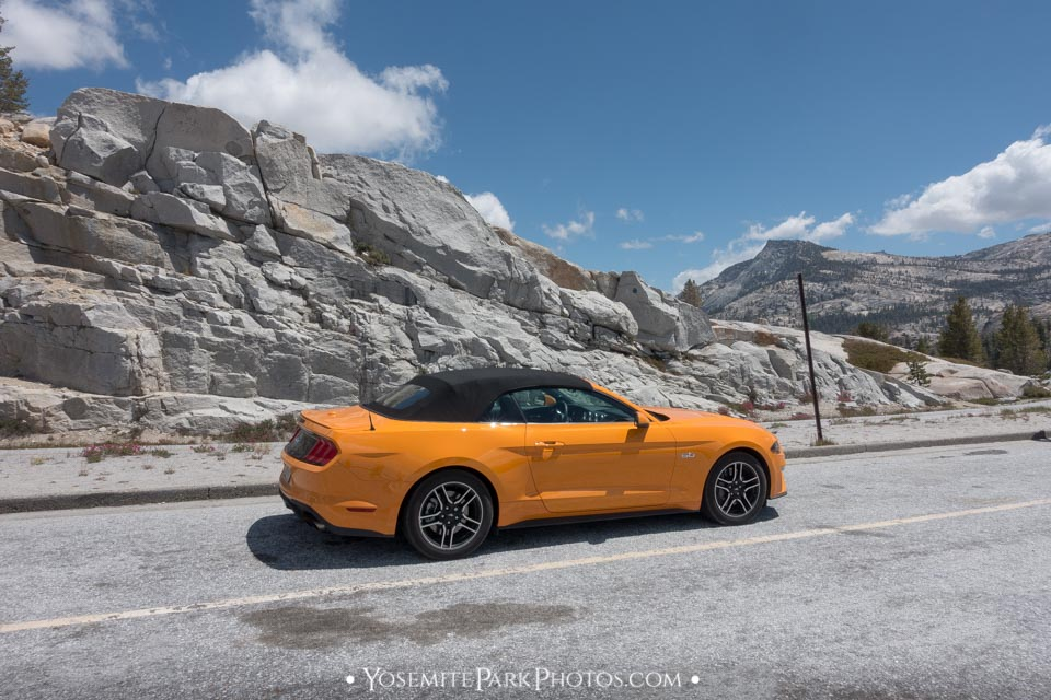 Orange mustang Convertible at Olmsted Point - Yosemite cars & traffic