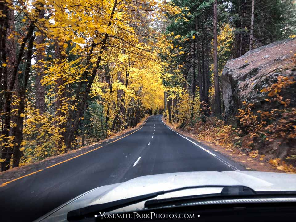 Northside Drive in October - autumn Sierra road trips - Yosemite