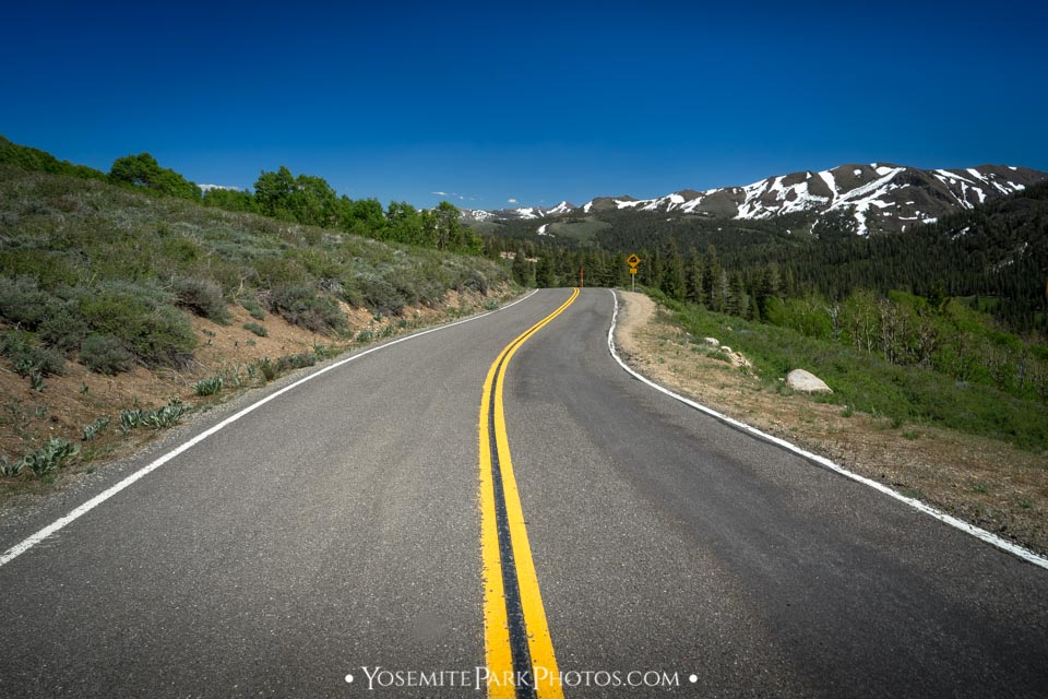 Open road and double yellow line - Sonora Pass Road Trip
