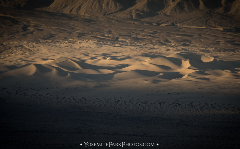 Warm afternoon light + shadows on sand dunes - Death Valley National Park