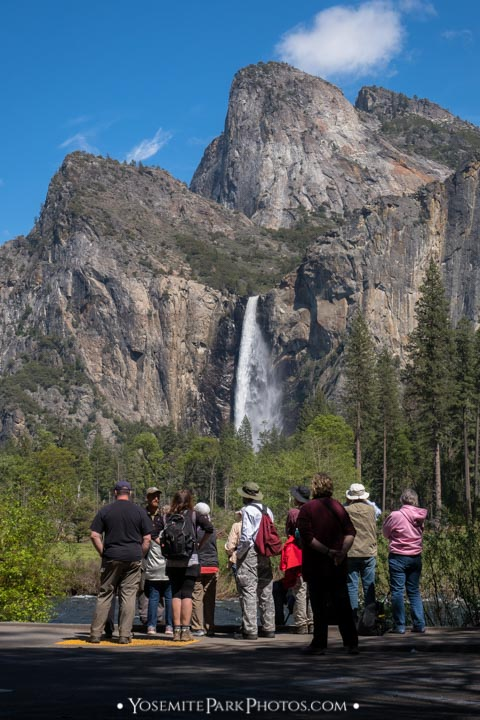 Photo Tour Group in spring, with Bridalveil Fall - portrait