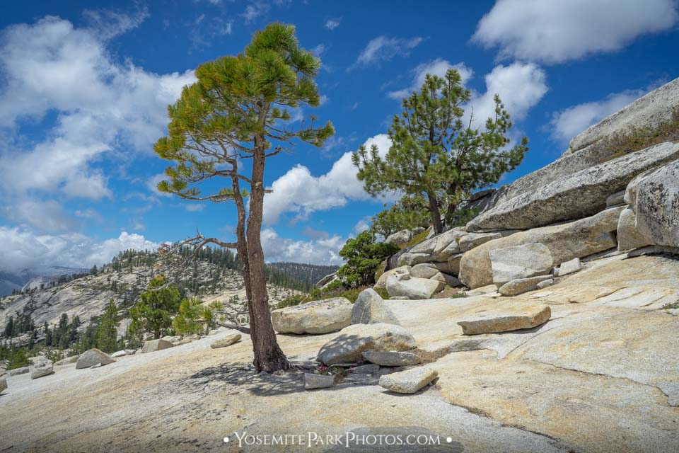 Granite rock scenery - Olmsted Point photos