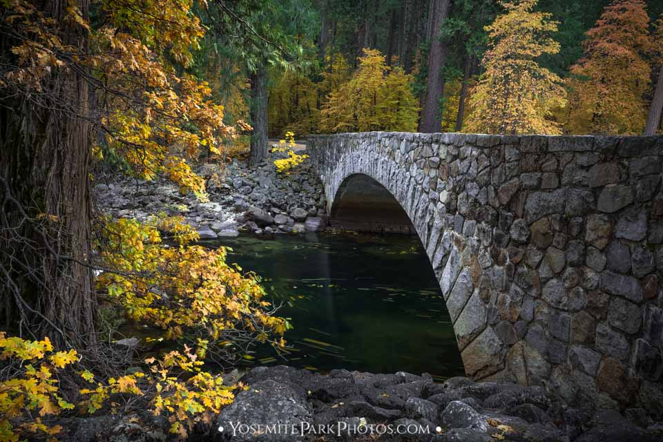 Pohono Bridge Photos - Fall Colors in trees