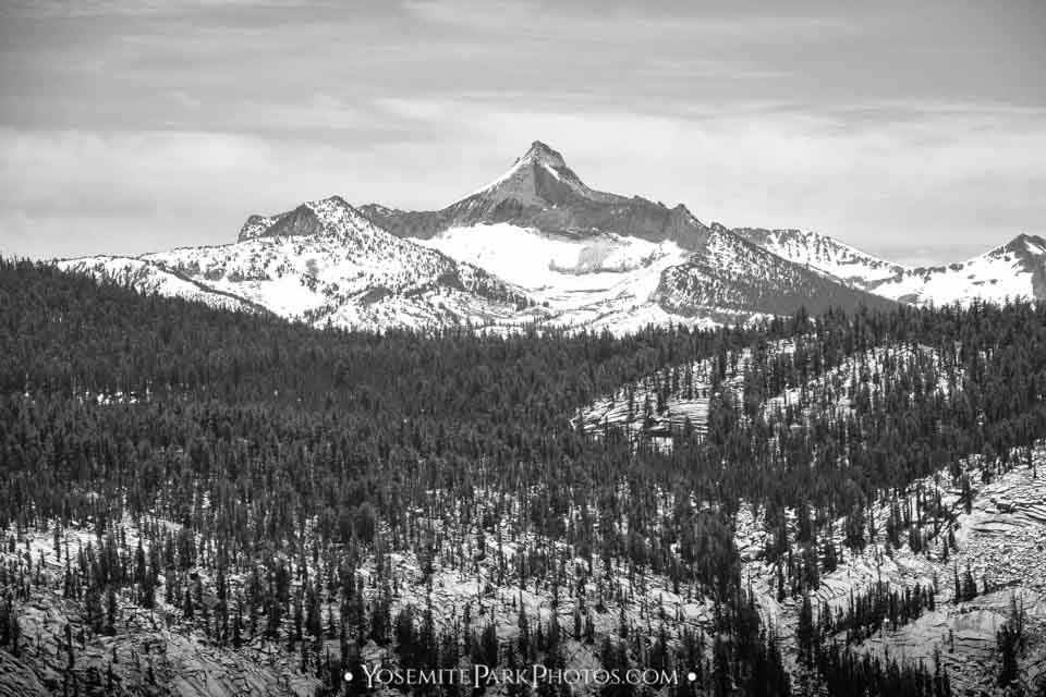 The Cockscomb mountain peak off Tioga Road - Black and White