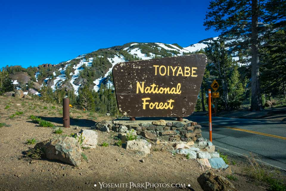 Toiyabe national Forest Sign Near The Summit