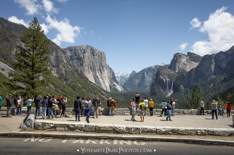Tunnel View Crowds in spring - Photos of Yosemite Tourists