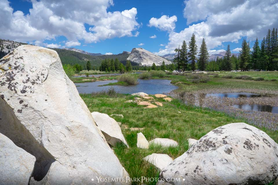 Boulders & pool, with Lembert Dome - Tuolumne Meadows photos