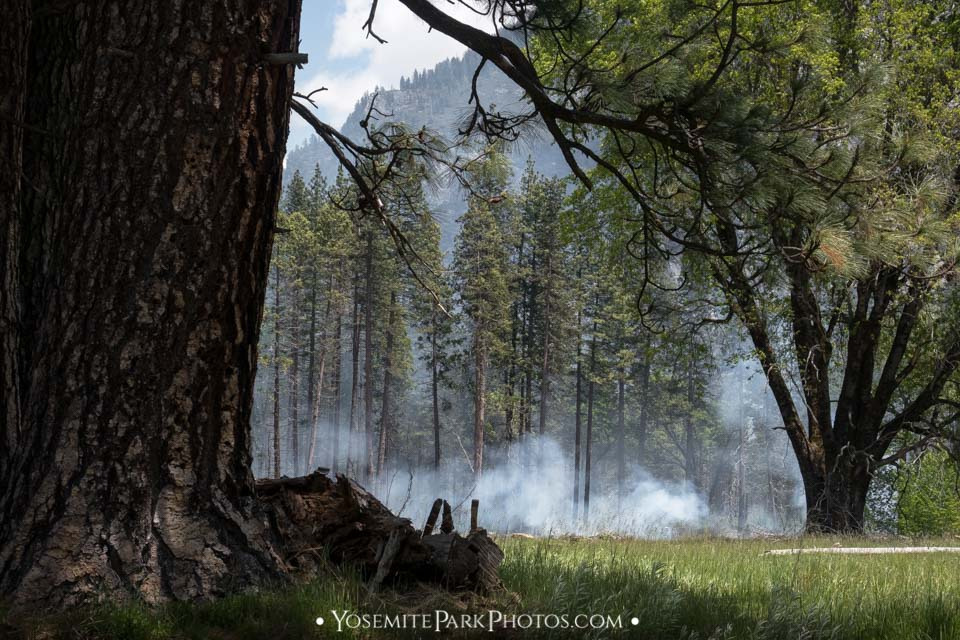 Smoke from controlled burn piles in Yosemite Valley