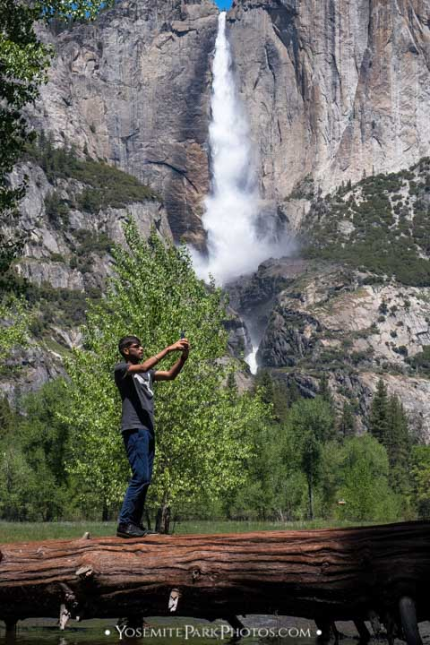 Indian man taking a selfie with Yosemite Falls while balanced on a log