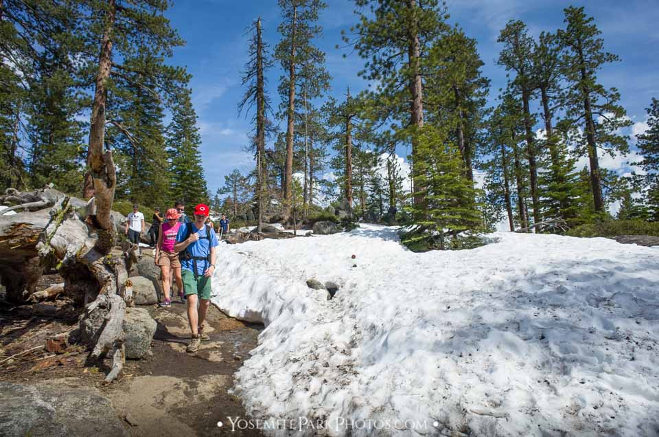 Hiking group on snowy trail - Yosemite Point